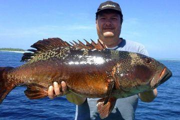 Fiskerejser Maldiverne