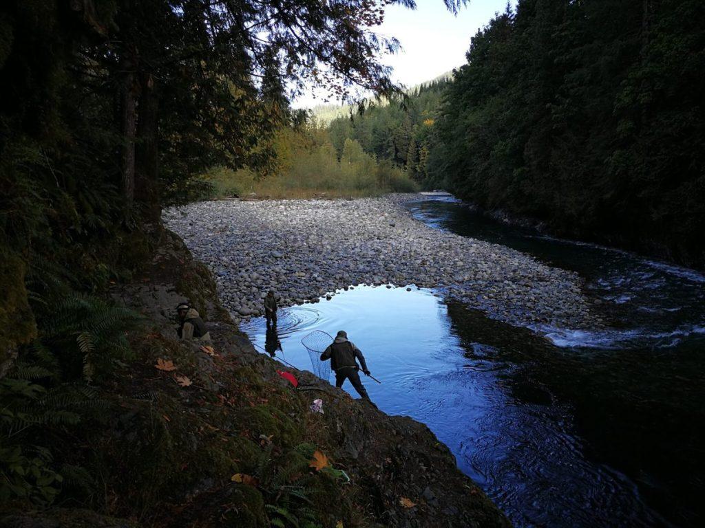 Fiskerejse efter laks i oktober Allisons pool