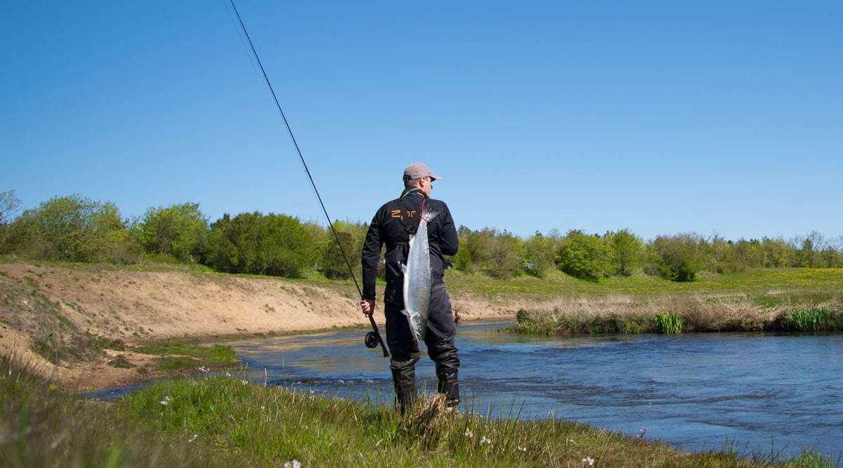 fiskerejse-skjern-å