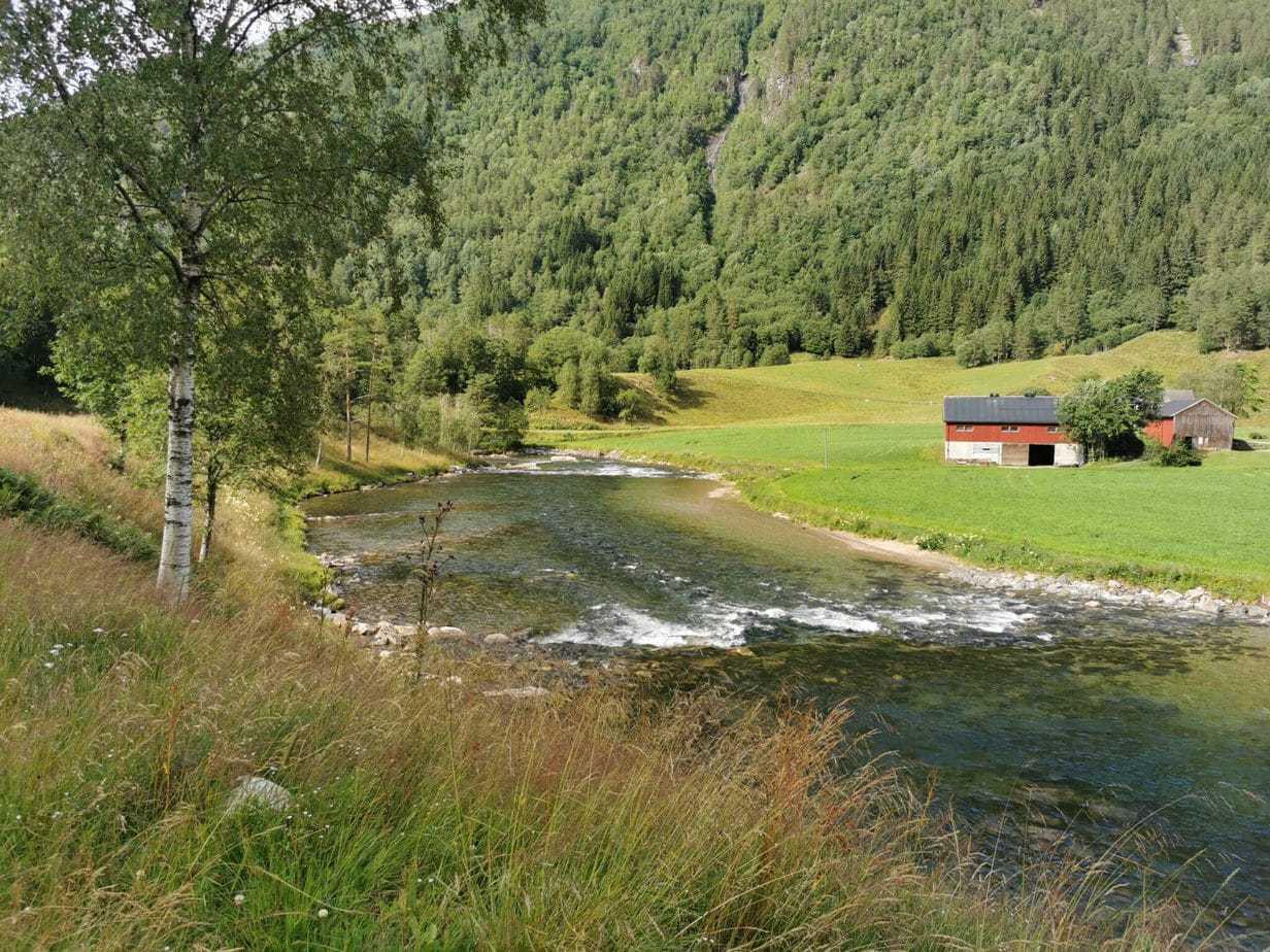 Todalselven i Norge med fiske-eventyr (8)