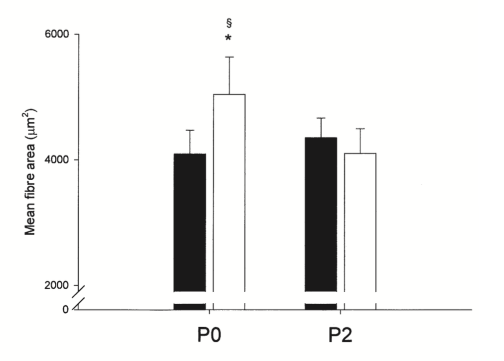 fissac _ área fibras musculares ingesta proteínas