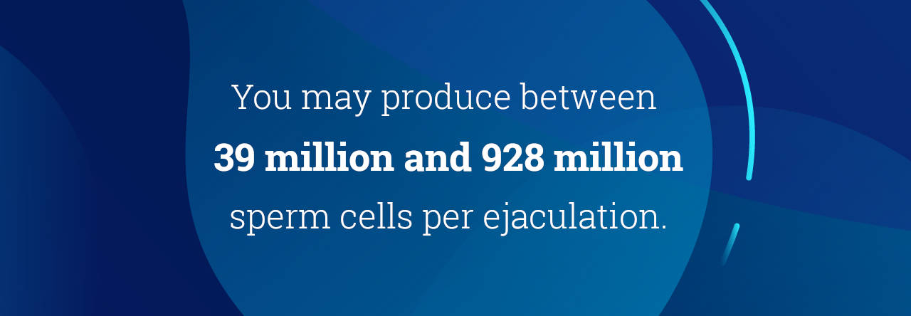 you may produce between 39 million and 928 million sperm cells per ejaculation.