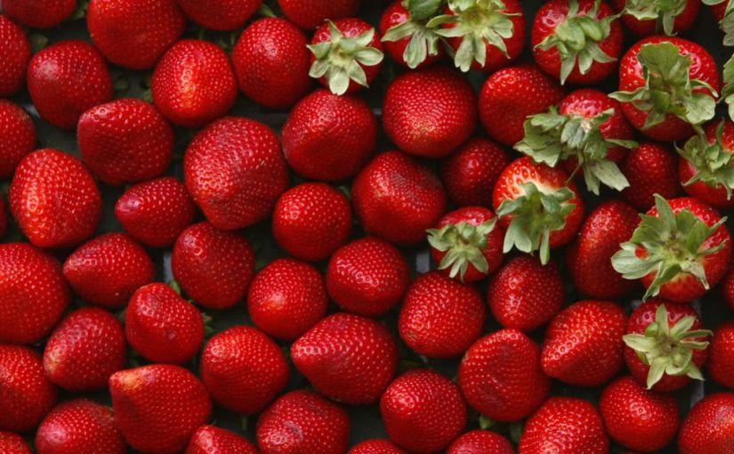 Tappeto di fragole