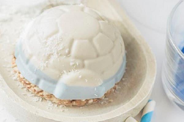 cheesecake citron coco vegan sans gluten sans lactose
