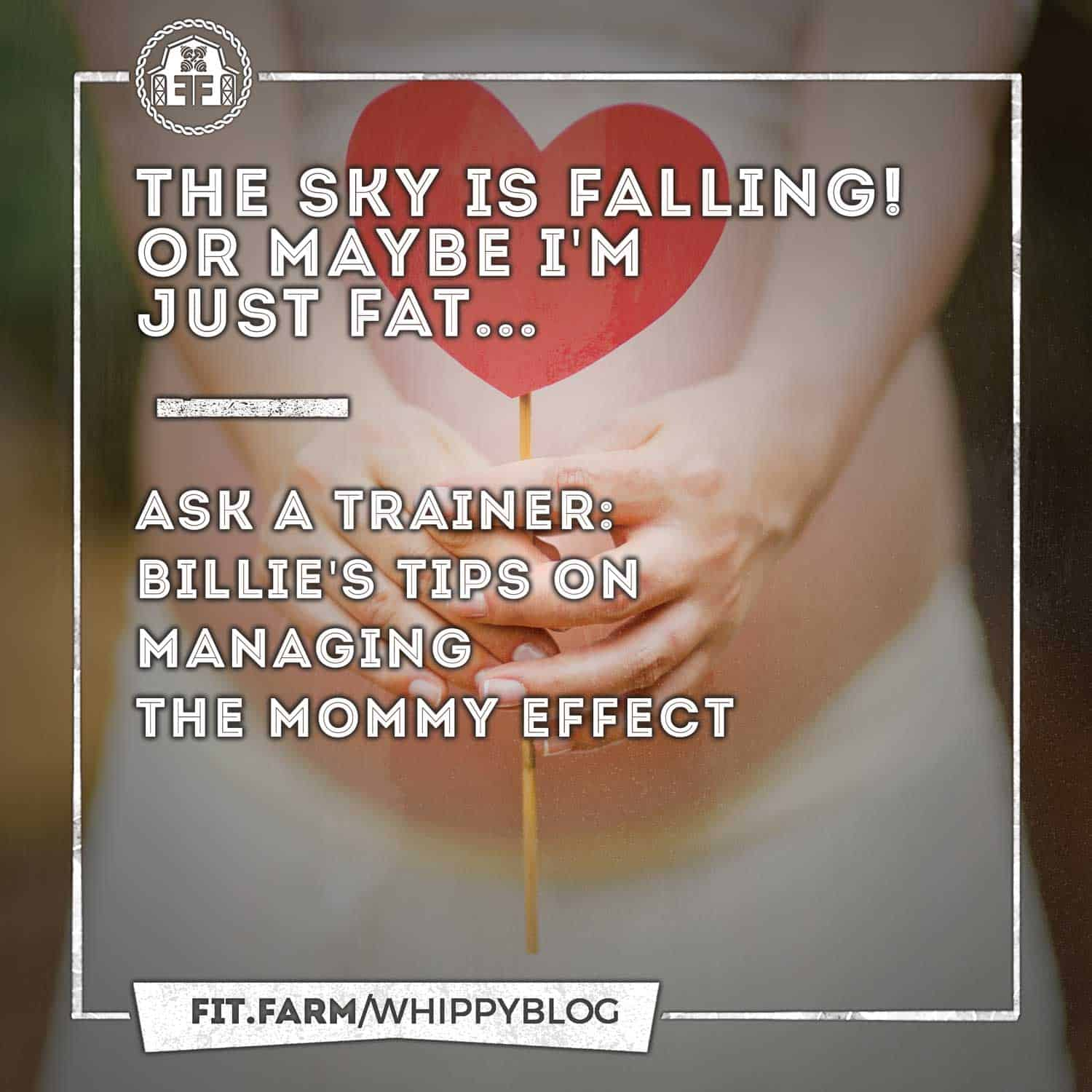 The Sky Is Falling Or Maybe I M Just Fat Fit Farm