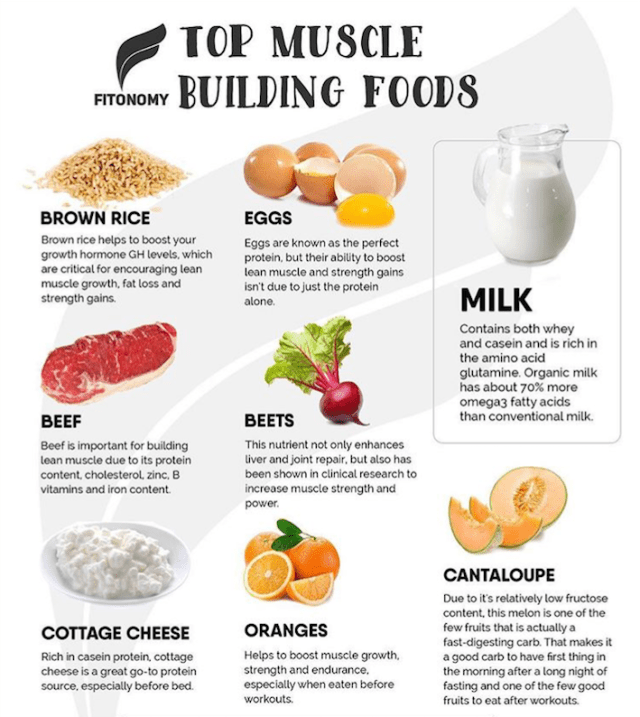 Fitonomy - Muscle Building Food