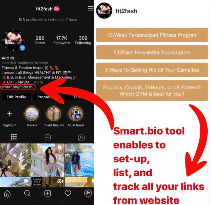 IG Account FIt2fash - Smartbio Tool from Tailwind