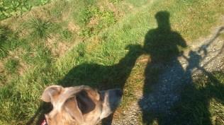 Und hier unser Schatten :-)))