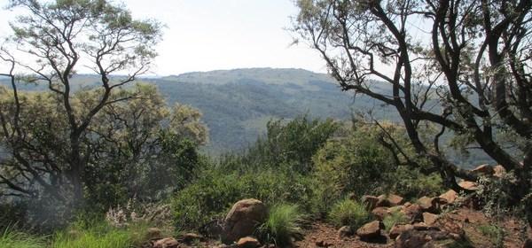Hiking Klipriviersberg Johannesburg 2016 April - 4