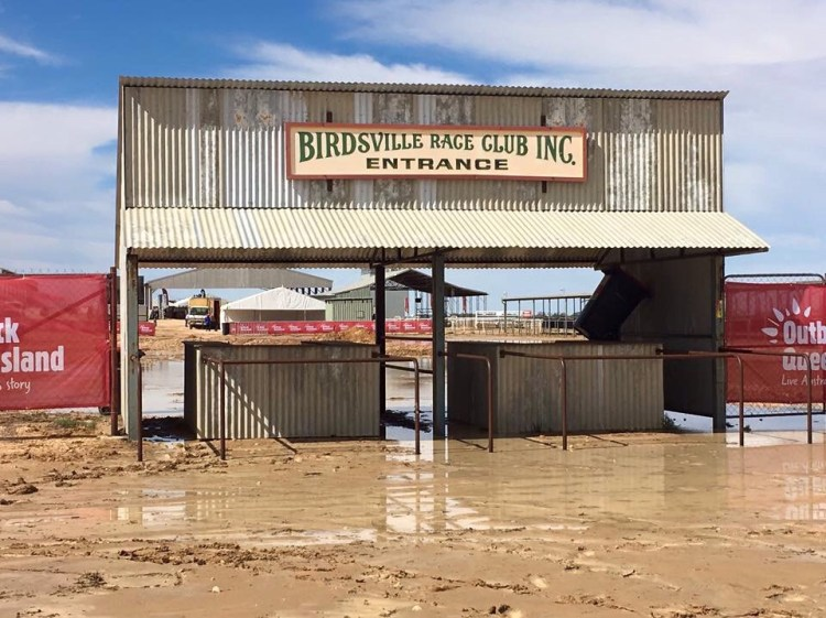 , Birdsville Races – Top things to do while you are there., Fit Average Jo
