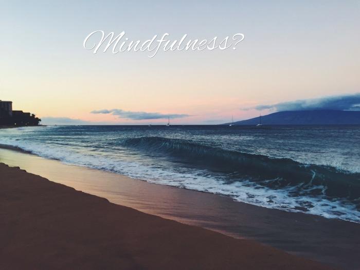 mindfulness-onzin-of-toch-niet-