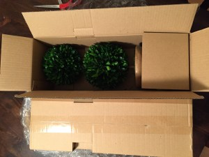 fake plants opening box
