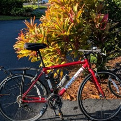 benefits of biking, entrepreneur