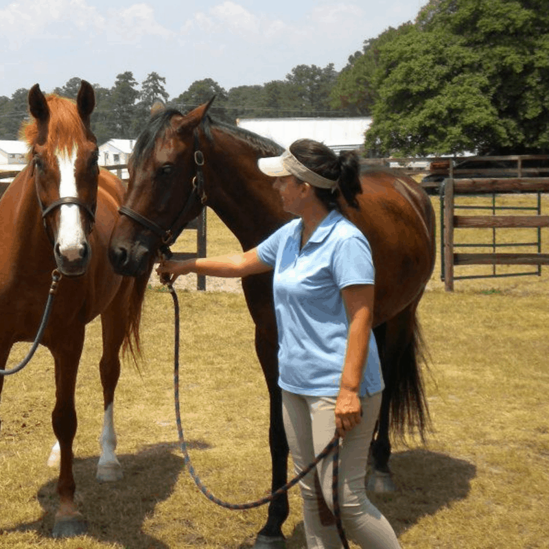 Stephanie overweight with horses