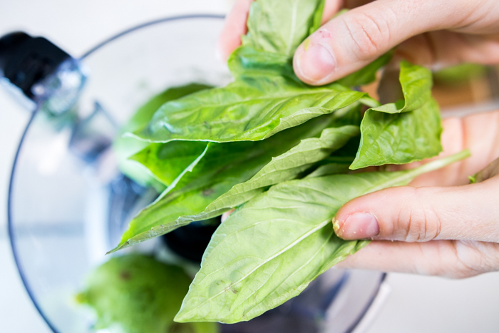 Adding the basil leaves to the food processor