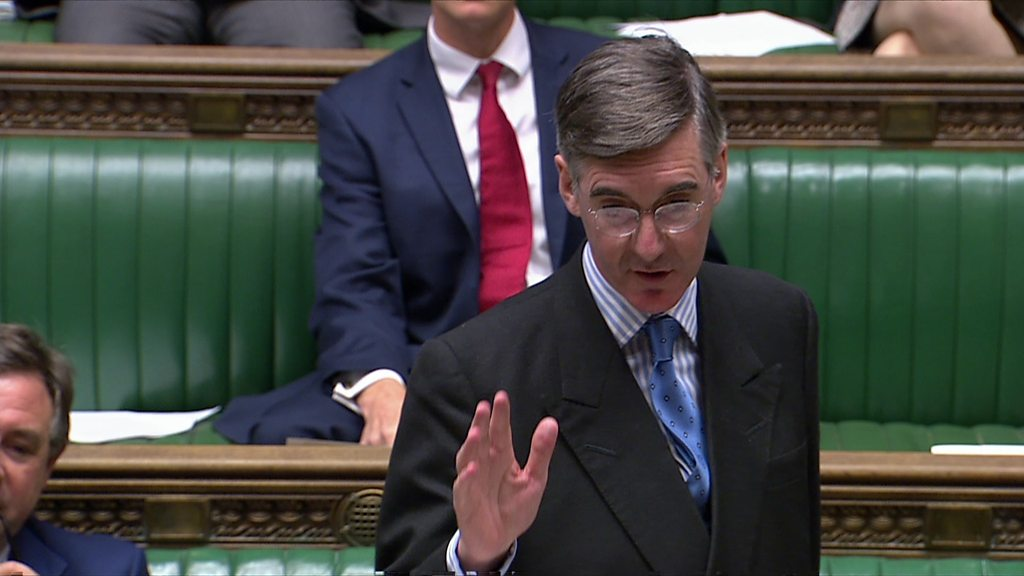 Rees-Mogg 'bullying Brexit whistleblowers', says doctor