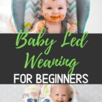 How to start baby led weaning for beginners