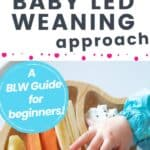baby led weaning solids