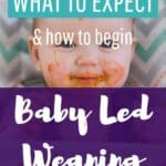 What to expect the first week of Baby Led Weaning