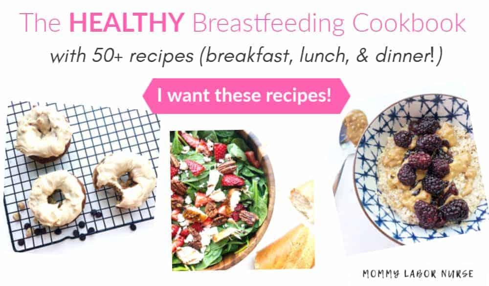 Breastfeeding Cookbook