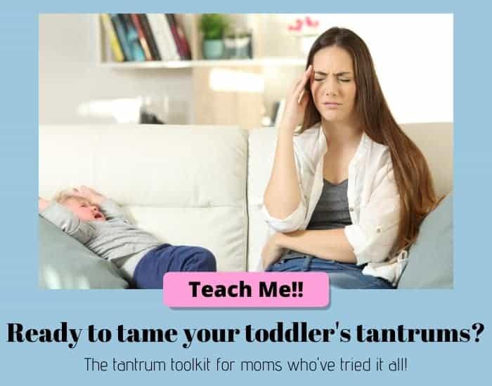 toddler tantrum toolkit
