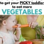 Food Ideas for Picky Toddlers
