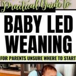 Baby Led Weaning Guide for Parents