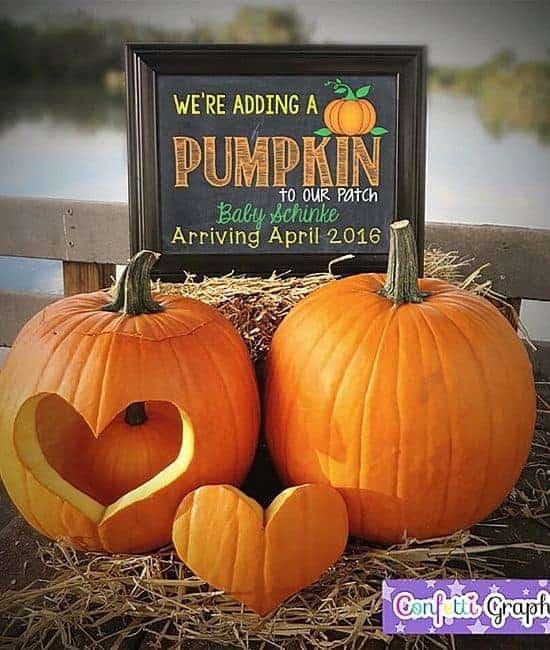 pumpkin pregnancy