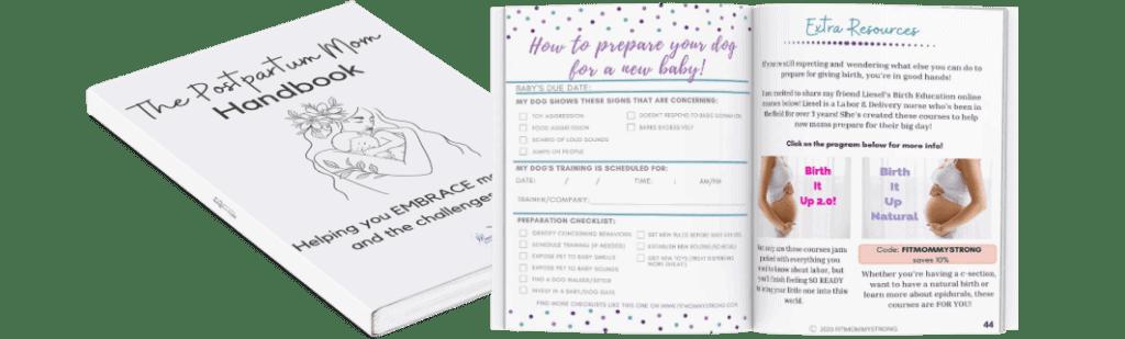 postpartum mom handbook