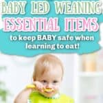 Baby Led Weaning Essential MUST HAVES
