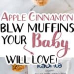 Baby Led Weaning Apple Cinnamon Muffins