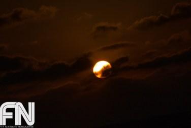 Sunset_Yoga_March595
