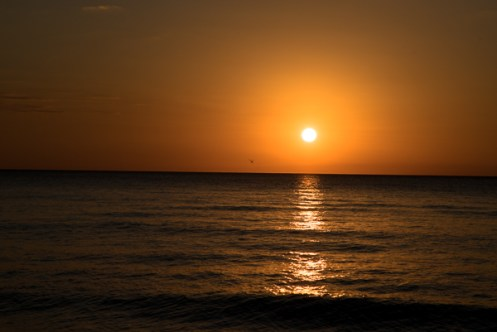 Fit Nation Sunset Yoga Feb16--68