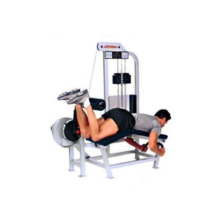 Life Fitness Pro 1 Leg Curl Allong Machine De