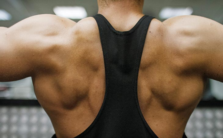 Muscles Targeted In Reverse Grip Pull Down