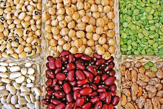 beans are a great food to help prevent headaches
