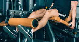 Finding the Best Leg Extension Alternatives