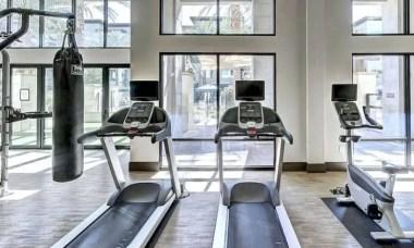 how tight should a treadmill belt be