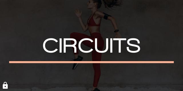 Circuits (1)