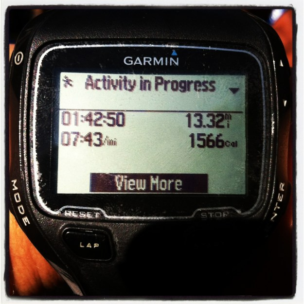 SD Half Marathon - Running Faster Than I Ever Imagined I Could!