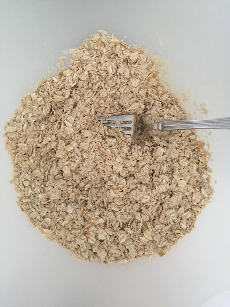 peanut butter protein balls vega protein