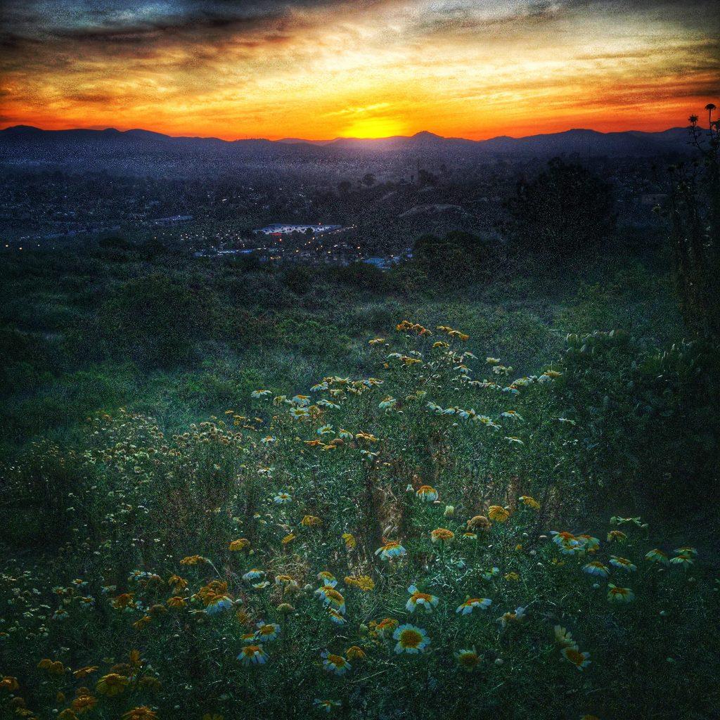 Beautiful sunrise during hill repeats
