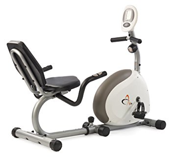 best recumbent bike under 200