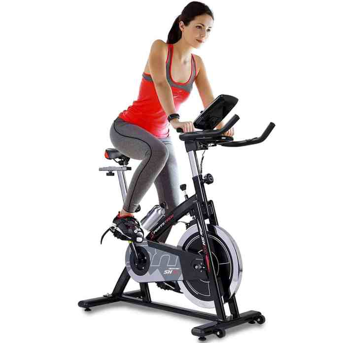 Sportstech Professional Indoor Cycle SX200