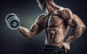 Muscle Loss - Prevent it by doing Weight Training