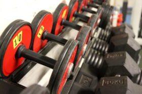 Haltères et musculation