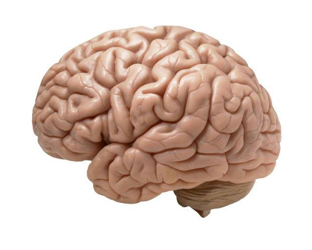 Votre cerveau peut vous jouer des tours et mettre à mal votre motivation.