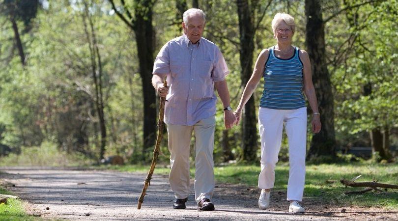 senior brain health