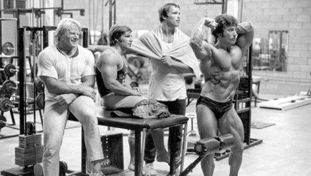 Arnold Ii Gym