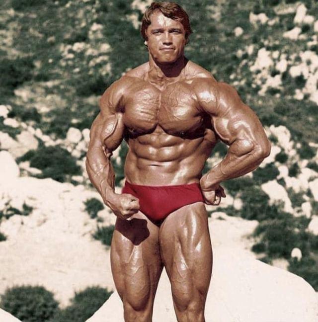 Arnold Schwarzenegger Ripped